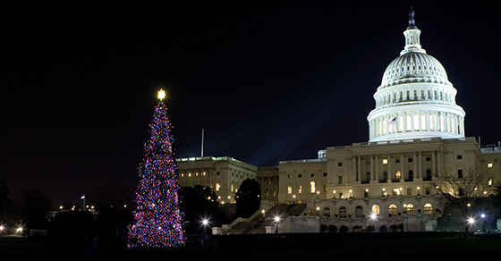 Congress gives a holiday gift in the form of favorable tax provisions